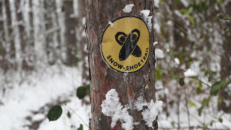 #OptOutside with a Winter Hike at Lake Geneva Canopy Tours