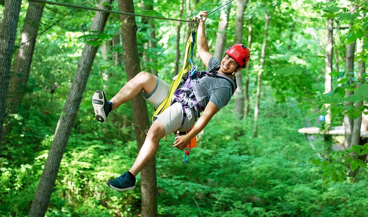 Zip through the trees